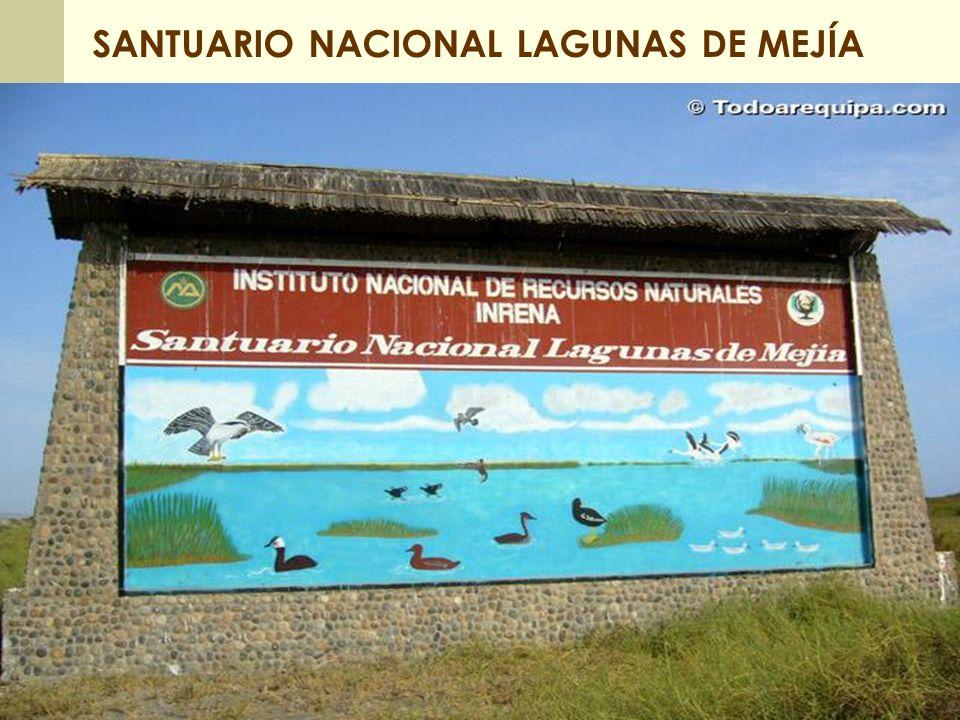 SANTUARIO NACIONAL LAGUNAS DE MEJÍA