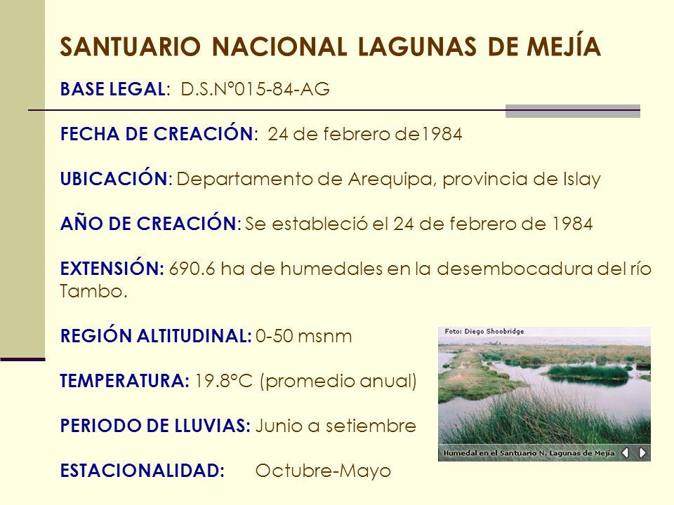 SANTUARIO NACIONAL LAGUNAS DE MEJÍA BASE LEGAL : D.S.Nº015-84-AG FECHA DE CREACIÓN : 24 de febrero de1984 UBICACIÓN : Departamento de Arequipa, provin