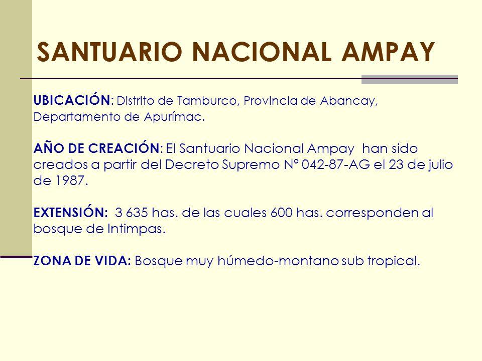 SANTUARIO NACIONAL AMPAY UBICACIÓN : Distrito de Tamburco, Provincia de Abancay, Departamento de Apurímac. AÑO DE CREACIÓN : El Santuario Nacional Amp