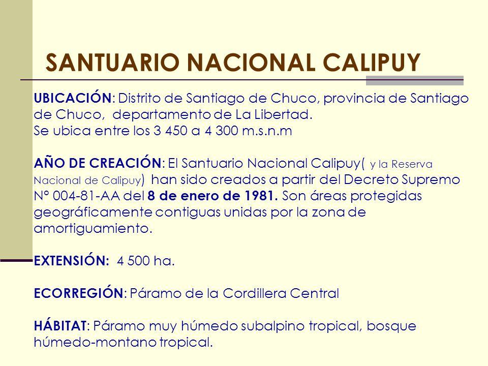 SANTUARIO NACIONAL CALIPUY UBICACIÓN : Distrito de Santiago de Chuco, provincia de Santiago de Chuco, departamento de La Libertad. Se ubica entre los