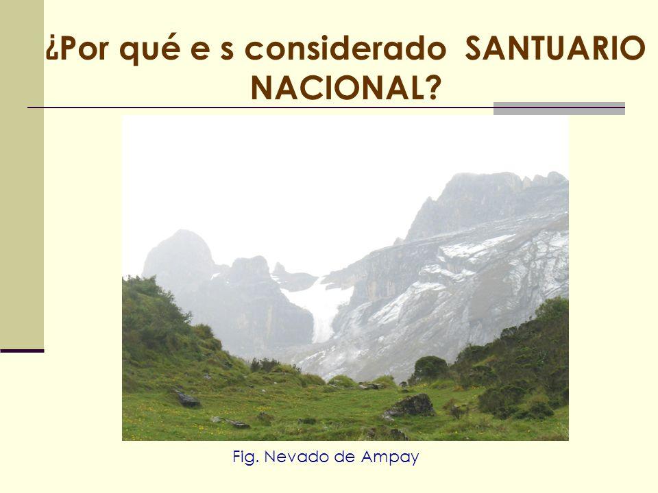 ¿ Por qué e s considerado SANTUARIO NACIONAL? Fig. Nevado de Ampay