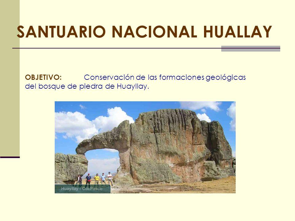 SANTUARIO NACIONAL HUALLAY OBJETIVO: Conservación de las formaciones geológicas del bosque de piedra de Huayllay.