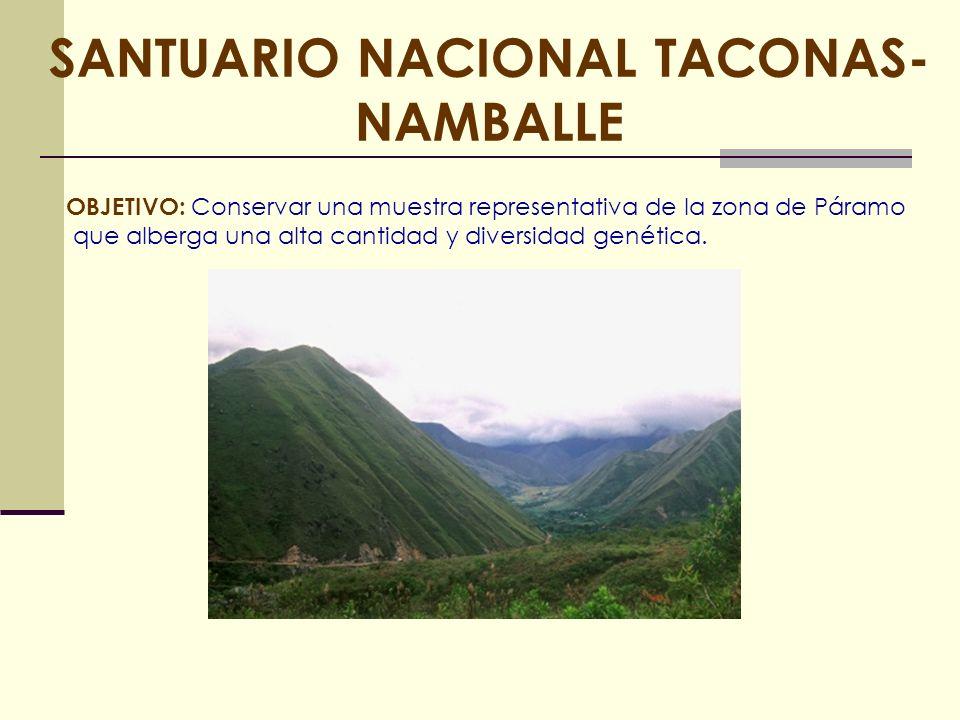 SANTUARIO NACIONAL TACONAS- NAMBALLE OBJETIVO: Conservar una muestra representativa de la zona de Páramo que alberga una alta cantidad y diversidad ge