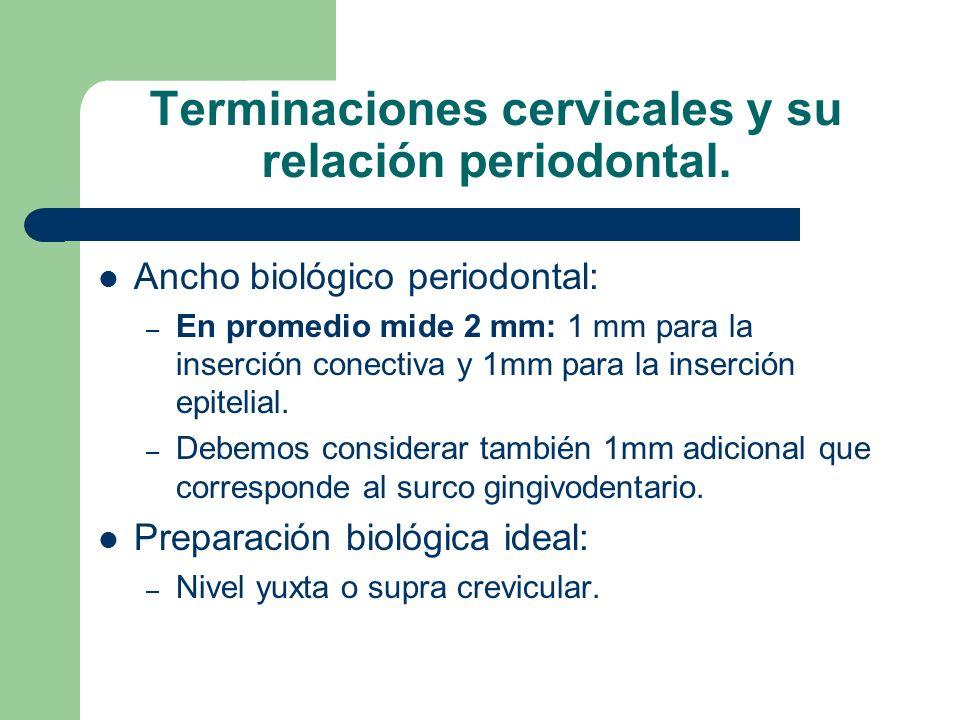 Terminaciones cervicales y su relación periodontal. Ancho biológico periodontal: – En promedio mide 2 mm: 1 mm para la inserción conectiva y 1mm para