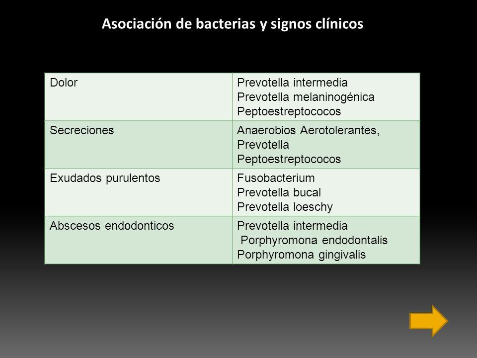 DolorPrevotella intermedia Prevotella melaninogénica Peptoestreptococos SecrecionesAnaerobios Aerotolerantes, Prevotella Peptoestreptococos Exudados p
