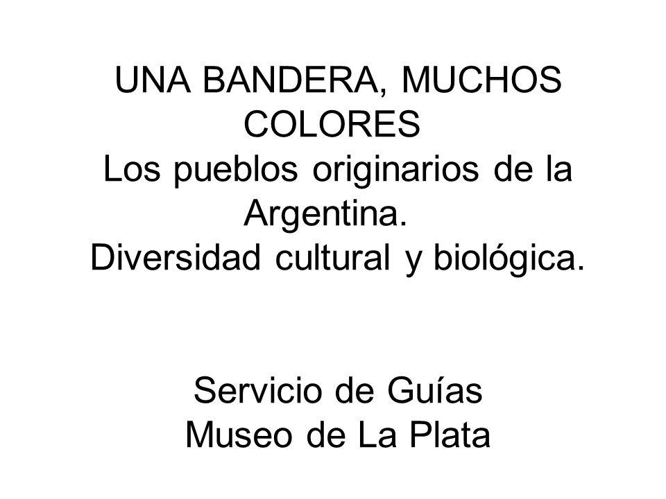 UNA BANDERA, MUCHOS COLORES Los pueblos originarios de la Argentina. Diversidad cultural y biológica. Servicio de Guías Museo de La Plata
