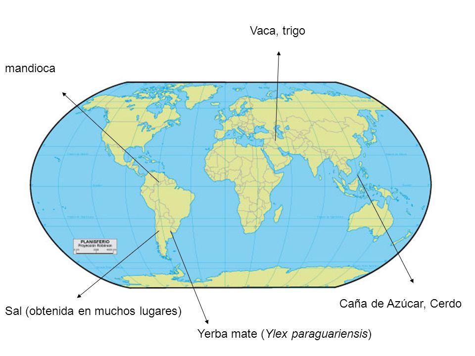 Vaca, trigo Caña de Azúcar, Cerdo Yerba mate (Ylex paraguariensis) Sal (obtenida en muchos lugares) mandioca