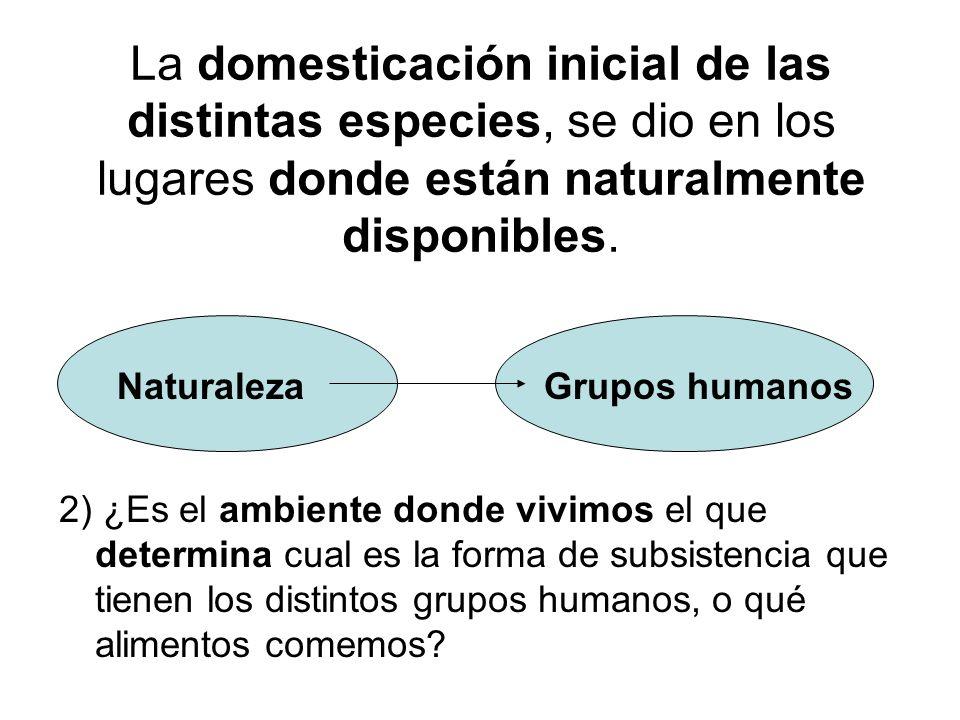 La domesticación inicial de las distintas especies, se dio en los lugares donde están naturalmente disponibles. 2) ¿Es el ambiente donde vivimos el qu