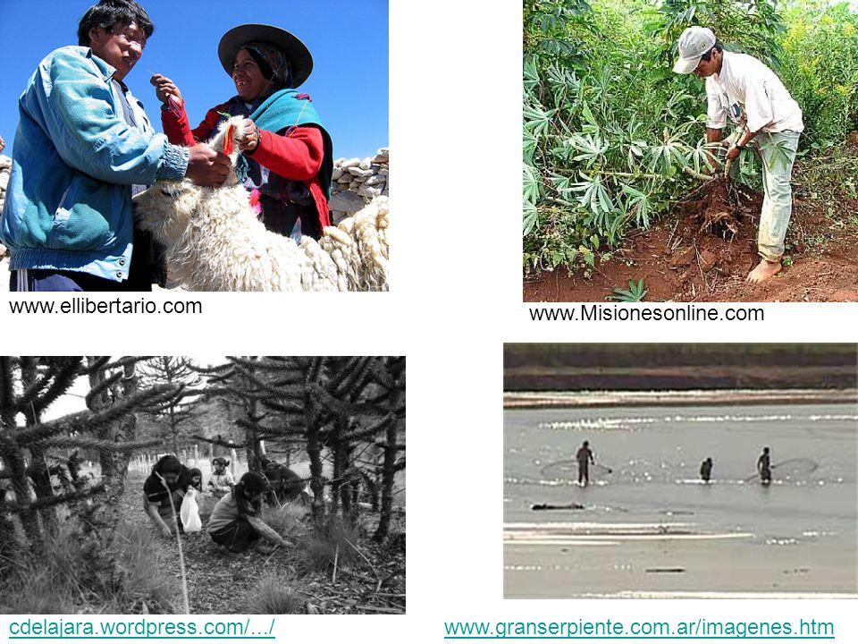 www.Misionesonline.com www.ellibertario.com cdelajara.wordpress.com/.../www.granserpiente.com.ar/imagenes.htm