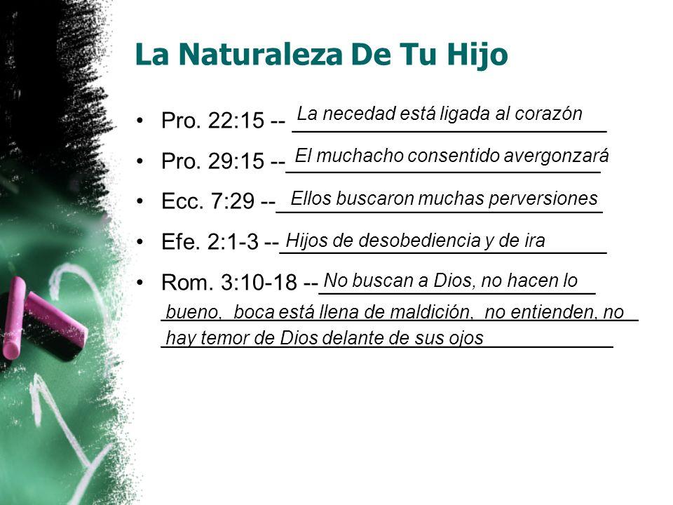 La Naturaleza De Tu Hijo Pro. 22:15 -- _________________________ Pro. 29:15 --_________________________ Ecc. 7:29 --__________________________ Efe. 2: