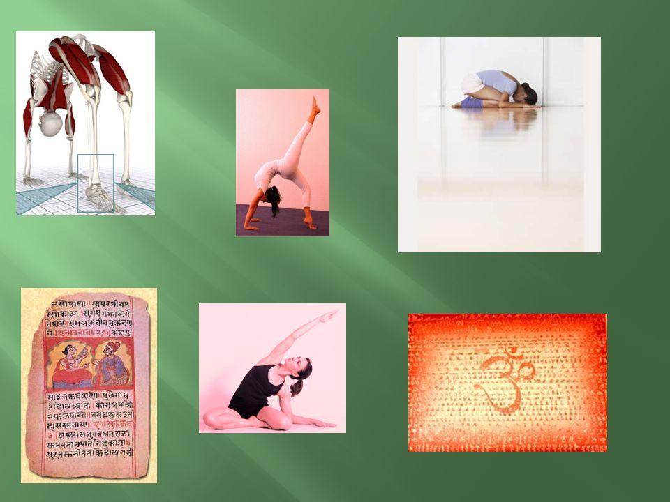 I.- Seminario Ghathasta Yoga II.- Seminario HathaYoga III.- Seminario Raja Yoga IV.- Seminario de Yogaterapia (yoga para la salud I) Diplomado de form