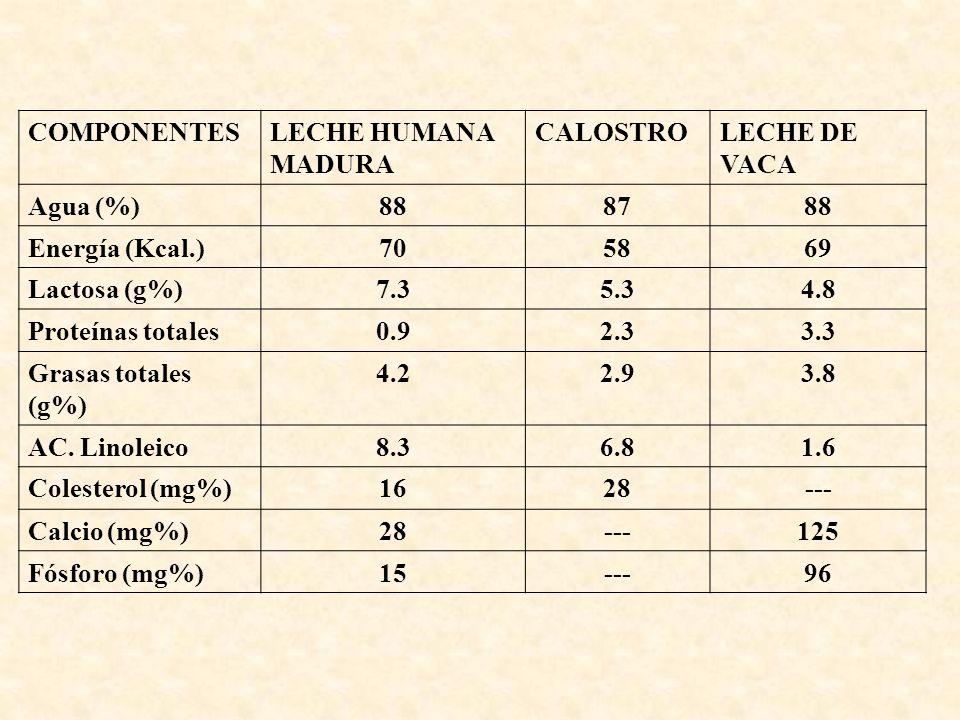 COMPONENTESLECHE HUMANA MADURA CALOSTROLECHE DE VACA Agua (%)888788 Energía (Kcal.)705869 Lactosa (g%)7.35.34.8 Proteínas totales0.92.33.3 Grasas tota