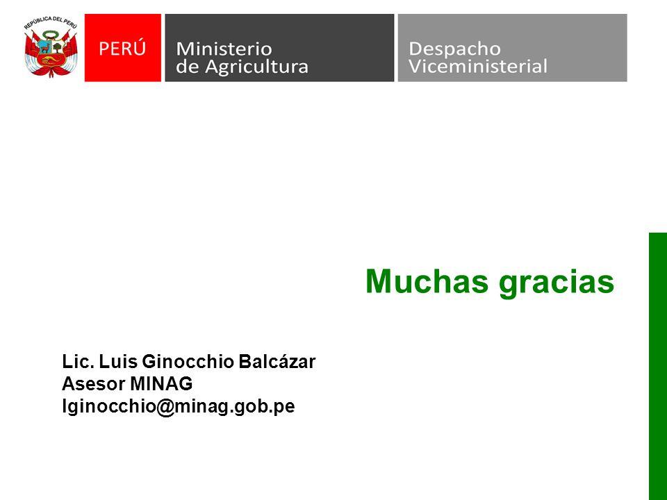 Muchas gracias Lic. Luis Ginocchio Balcázar Asesor MINAG lginocchio@minag.gob.pe
