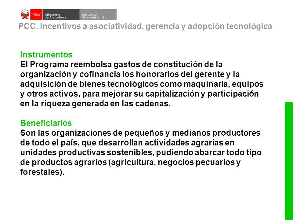 Instrumentos El Programa reembolsa gastos de constitución de la organización y cofinancia los honorarios del gerente y la adquisición de bienes tecnol