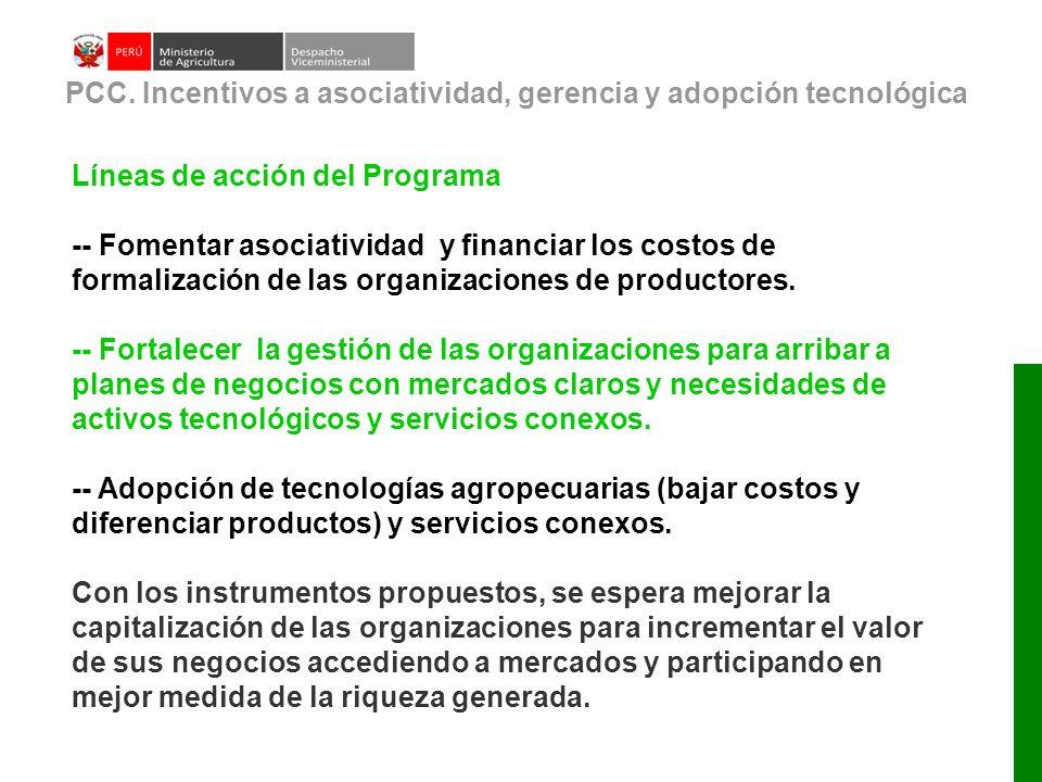 Líneas de acción del Programa -- Fomentar asociatividad y financiar los costos de formalización de las organizaciones de productores. -- Fortalecer la