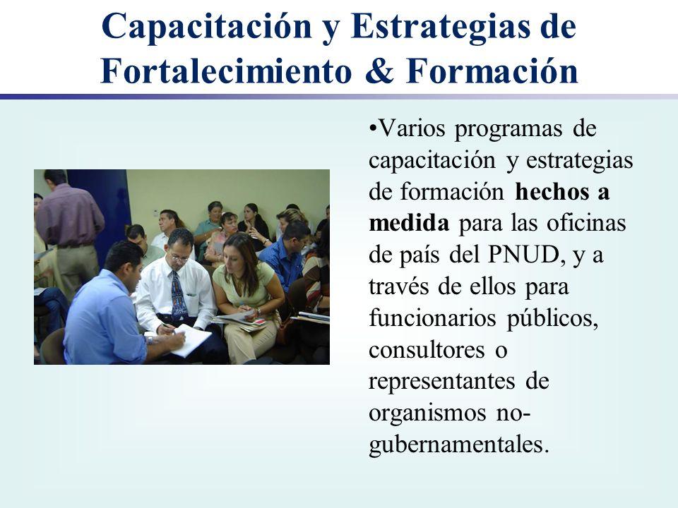Capacitación y Estrategias de Fortalecimiento & Formación Varios programas de capacitación y estrategias de formación hechos a medida para las oficina