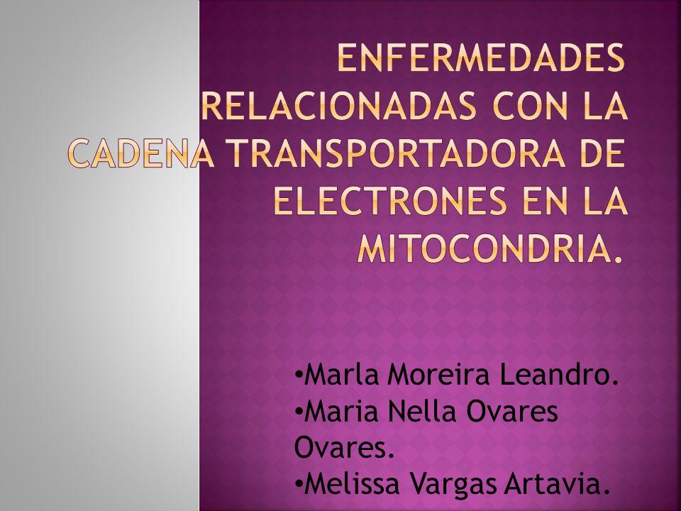 Marla Moreira Leandro. Maria Nella Ovares Ovares. Melissa Vargas Artavia.