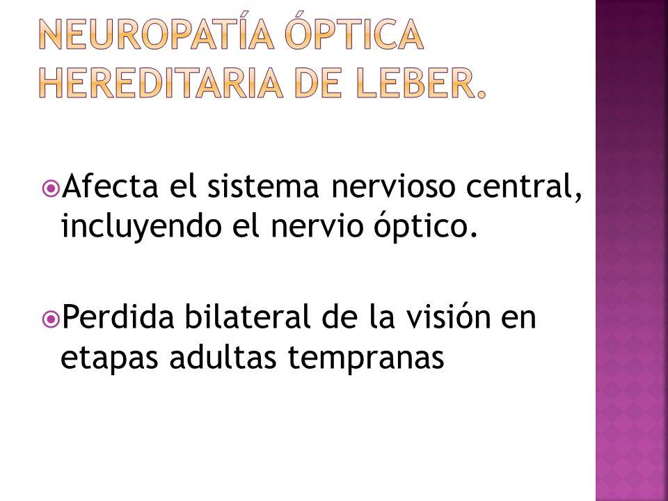 Afecta el sistema nervioso central, incluyendo el nervio óptico. Perdida bilateral de la visión en etapas adultas tempranas