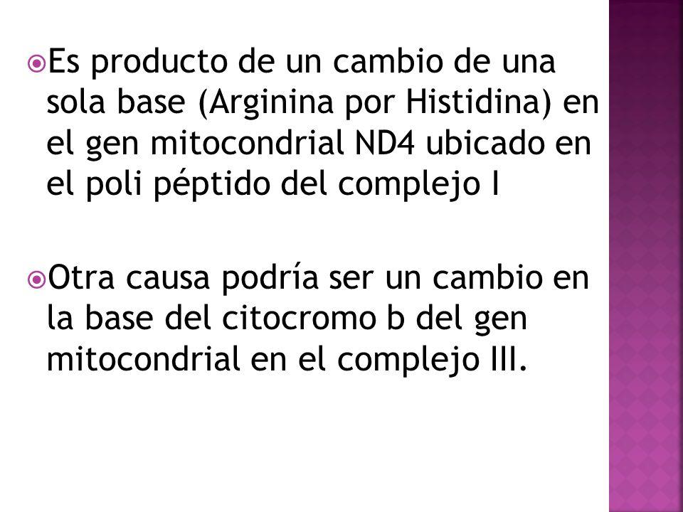 Es producto de un cambio de una sola base (Arginina por Histidina) en el gen mitocondrial ND4 ubicado en el poli péptido del complejo I Otra causa pod