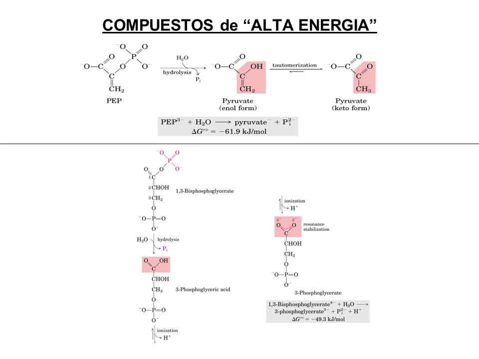 COMPUESTOS de ALTA ENERGIA