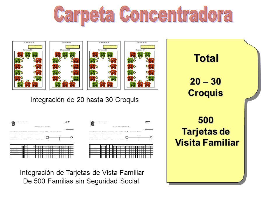 Integración de 20 hasta 30 Croquis Integración de Tarjetas de Vista Familiar De 500 Familias sin Seguridad Social Total 20 – 30 Croquis 500 Tarjetas d