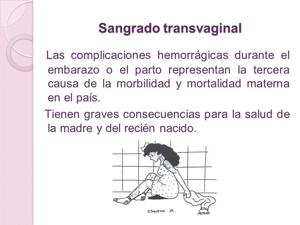 Sangrado transvaginal Las complicaciones hemorrágicas durante el embarazo o el parto representan la tercera causa de la morbilidad y mortalidad matern