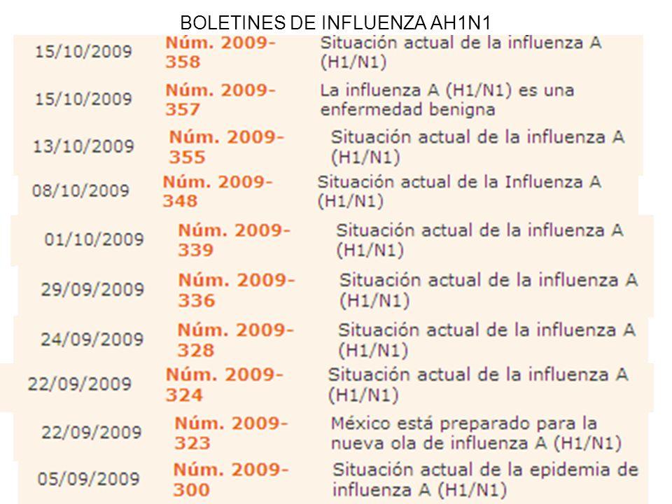 13 BOLETINES DE INFLUENZA AH1N1