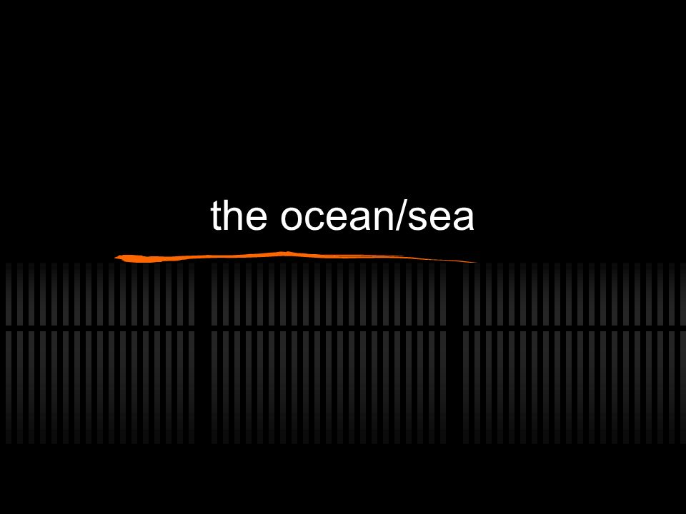 the ocean/sea
