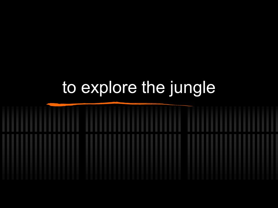 to explore the jungle