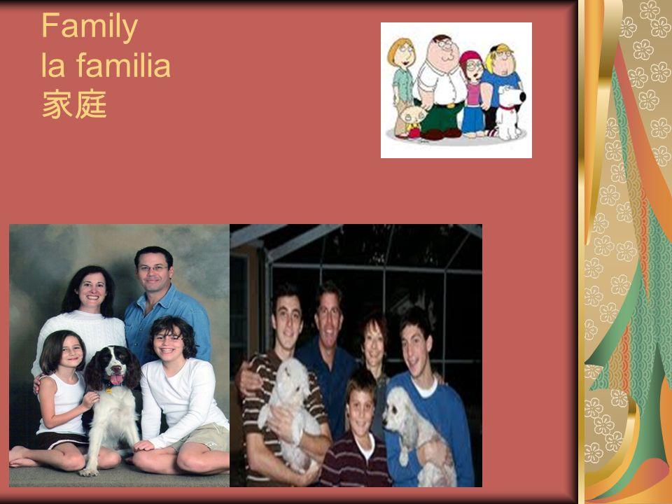 Family la familia