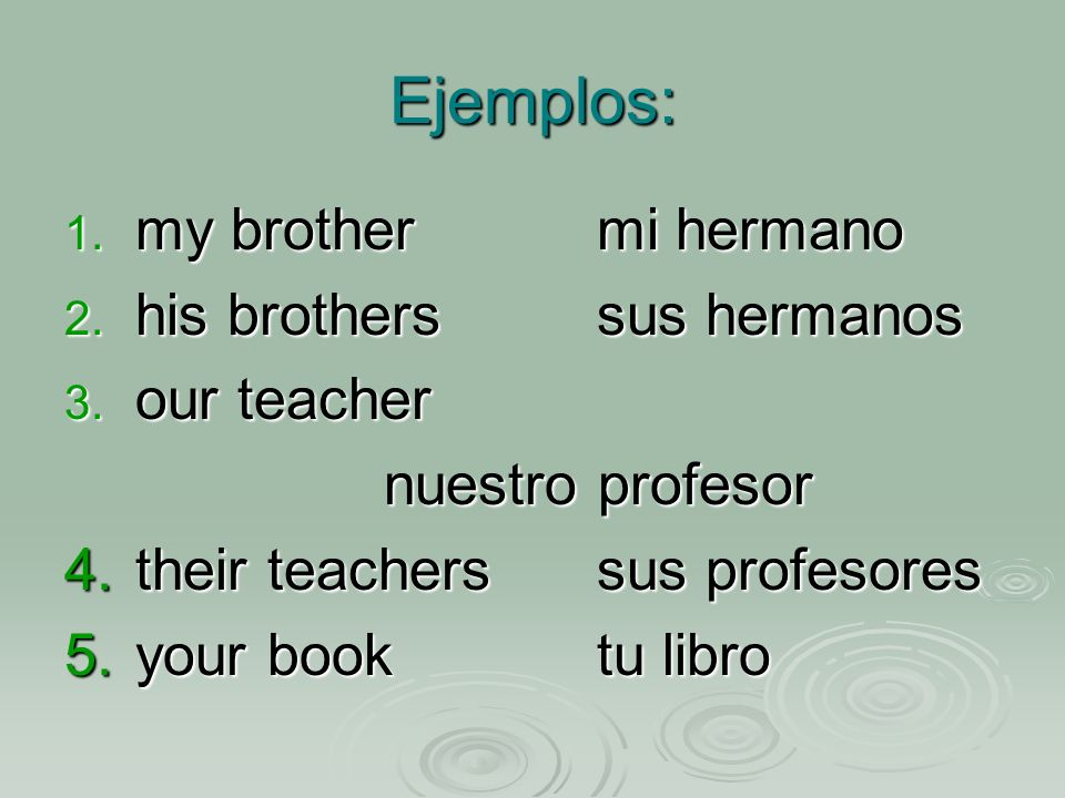 Ejemplos: 1. my brothermi hermano 2. his brotherssus hermanos 3. our teacher nuestro profesor 4.their teacherssus profesores 5.your booktu libro