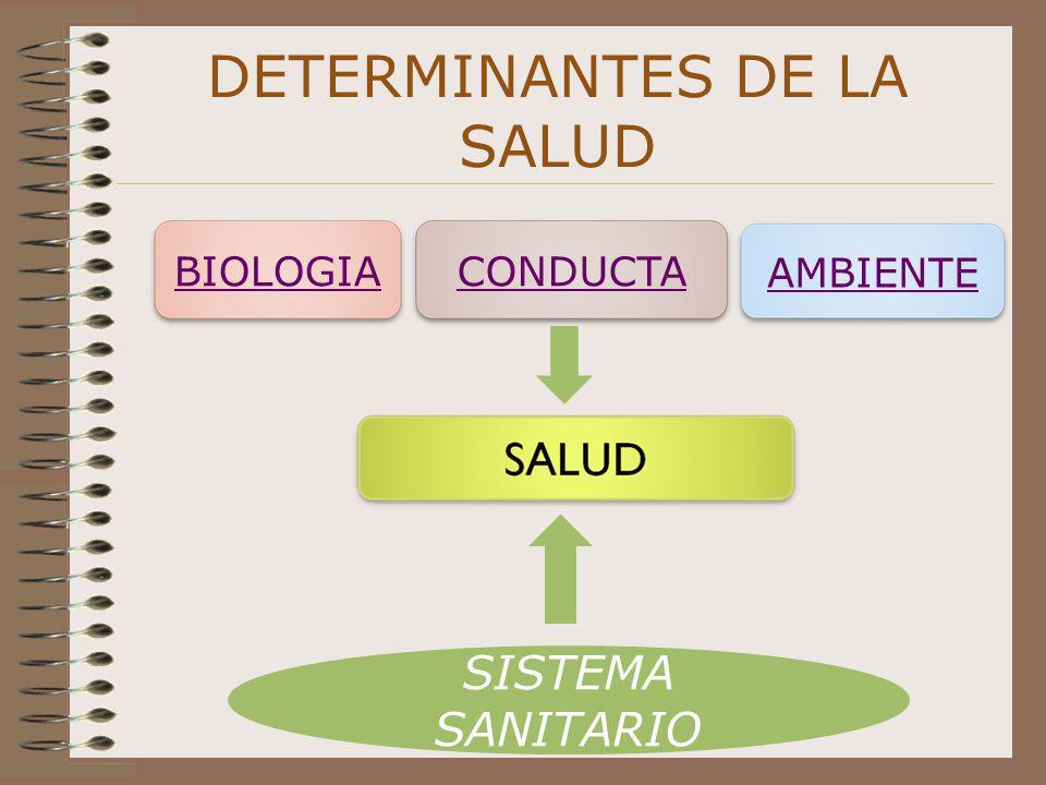 DETERMINANTES DE LA SALUD BIOLOGIACONDUCTA AMBIENTE SISTEMA SANITARIO