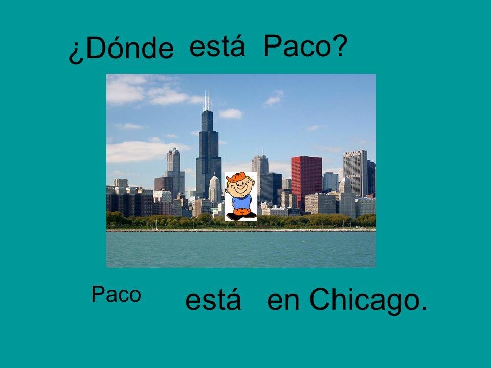 ¿Dónde Paco Paco? en Chicago. está