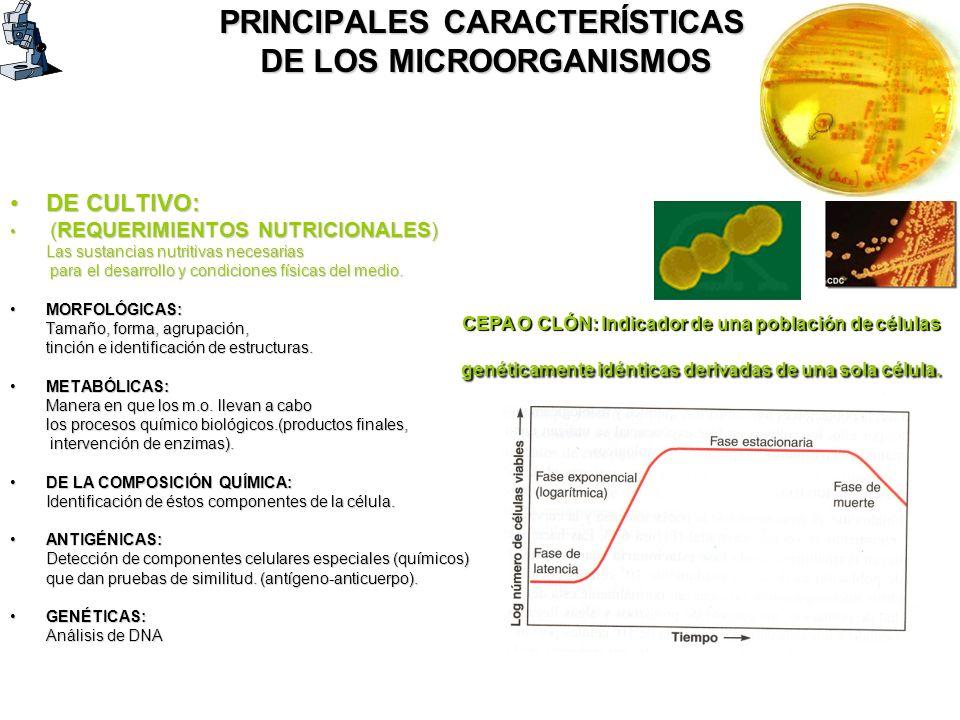PRINCIPALES CARACTERÍSTICAS DE LOS MICROORGANISMOS DE CULTIVO:DE CULTIVO: (REQUERIMIENTOS NUTRICIONALES) (REQUERIMIENTOS NUTRICIONALES) Las sustancias