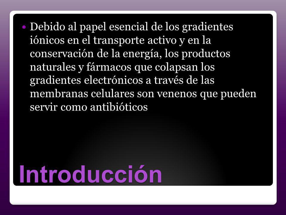 Introducción Debido al papel esencial de los gradientes iónicos en el transporte activo y en la conservación de la energía, los productos naturales y