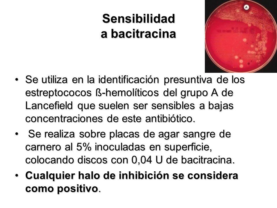 Sensibilidad a bacitracina Se utiliza en la identificación presuntiva de los estreptococos ß-hemolíticos del grupo A de Lancefield que suelen ser sens