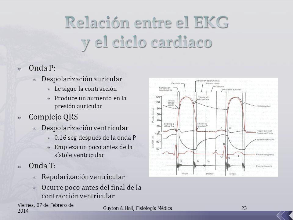 Onda P: Despolarización auricular Le sigue la contracción Produce un aumento en la presión auricular Complejo QRS Despolarización ventricular 0.16 seg después de la onda P Empieza un poco antes de la sístole ventricular Onda T: Repolarización ventricular Ocurre poco antes del final de la contracción ventricular Viernes, 07 de Febrero de 2014 23Guyton & Hall, Fisiología Médica