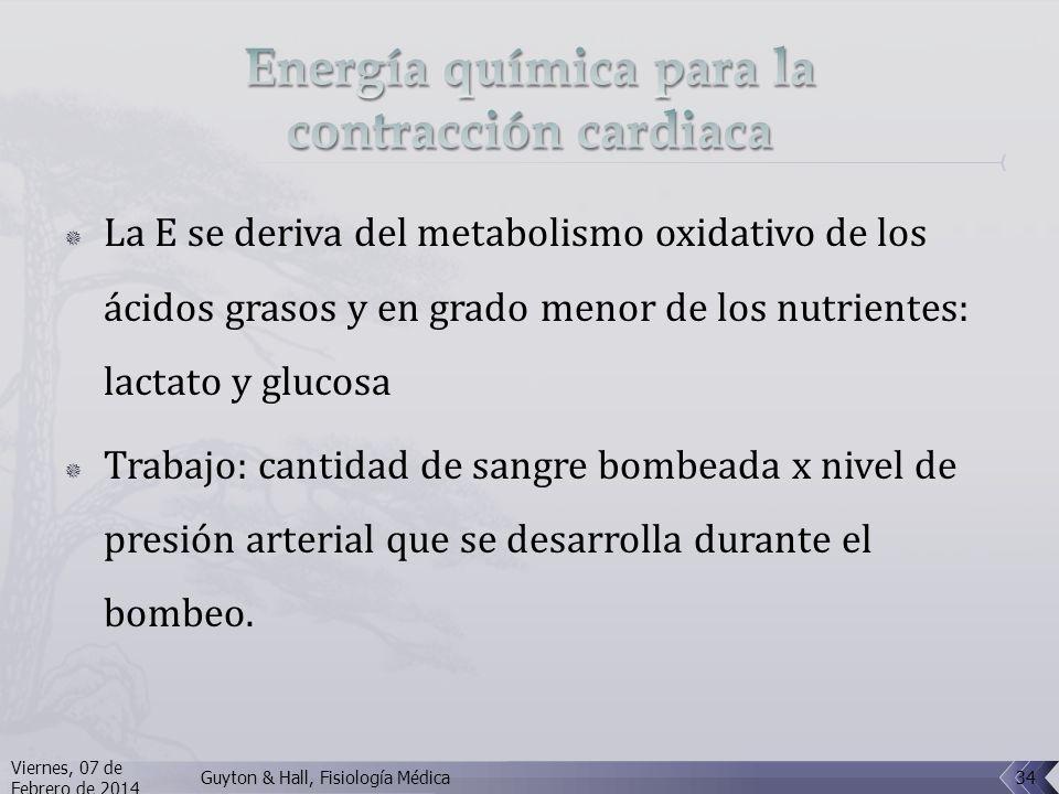 La E se deriva del metabolismo oxidativo de los ácidos grasos y en grado menor de los nutrientes: lactato y glucosa Trabajo: cantidad de sangre bombeada x nivel de presión arterial que se desarrolla durante el bombeo.
