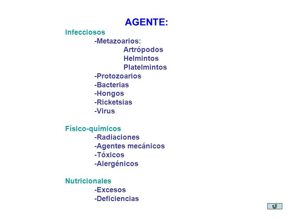 AGENTE: Infecciosos -Metazoarios: Artrópodos Helmintos Platelmintos -Protozoarios -Bacterias -Hongos -Ricketsias -Virus Físico-químicos -Radiaciones -Agentes mecánicos -Tóxicos -Alergénicos Nutricionales -Excesos -Deficiencias