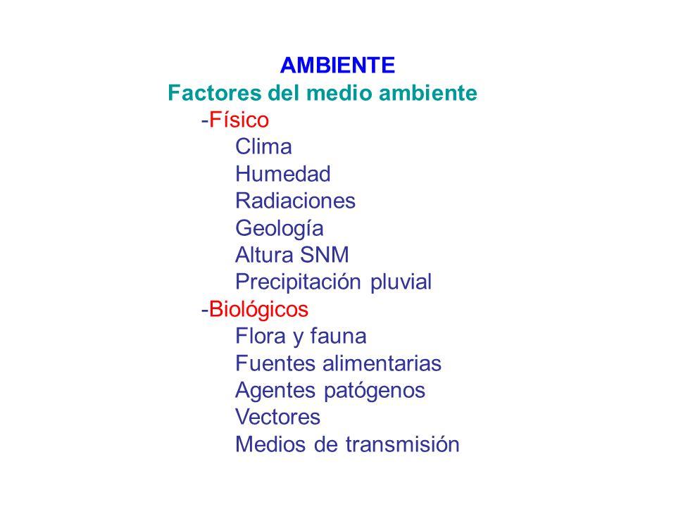 AMBIENTE Factores del medio ambiente -Físico Clima Humedad Radiaciones Geología Altura SNM Precipitación pluvial -Biológicos Flora y fauna Fuentes ali