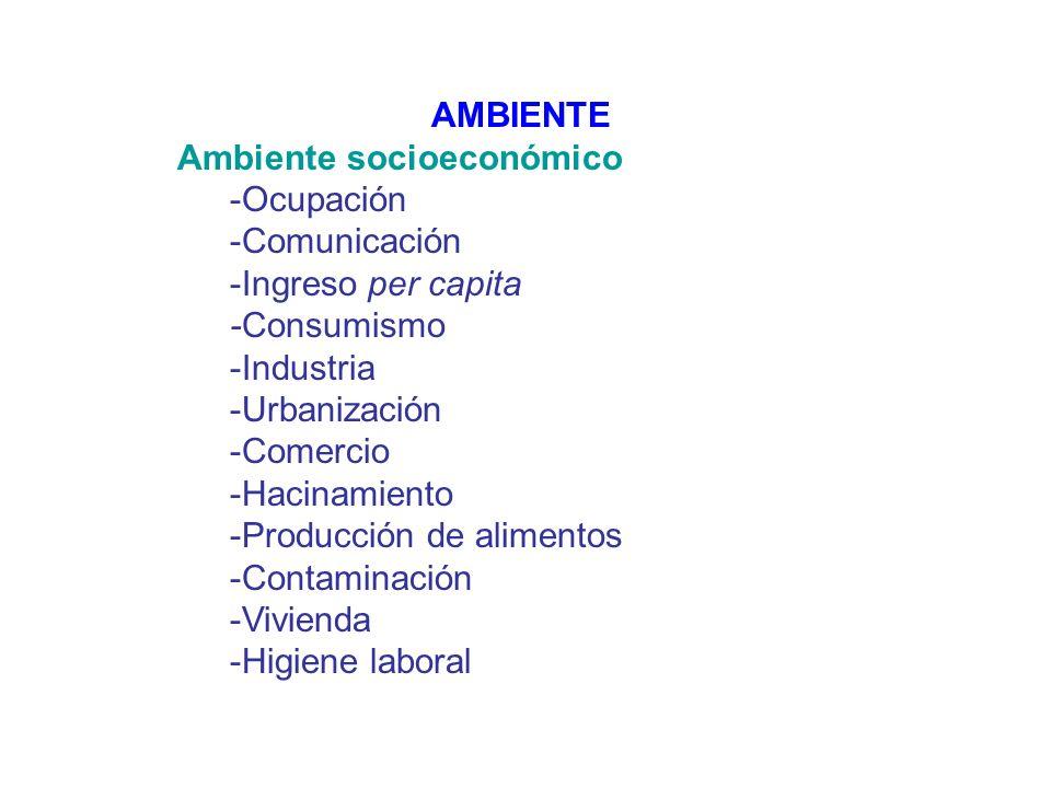 AMBIENTE Ambiente socioeconómico -Ocupación -Comunicación -Ingreso per capita -Consumismo -Industria -Urbanización -Comercio -Hacinamiento -Producción de alimentos -Contaminación -Vivienda -Higiene laboral