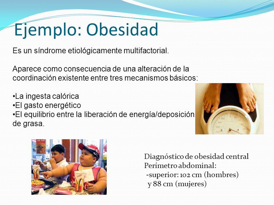 Ejemplo: Obesidad Diagnóstico de obesidad central Perímetro abdominal: -superior: 102 cm (hombres) y 88 cm (mujeres) Es un síndrome etiológicamente mu