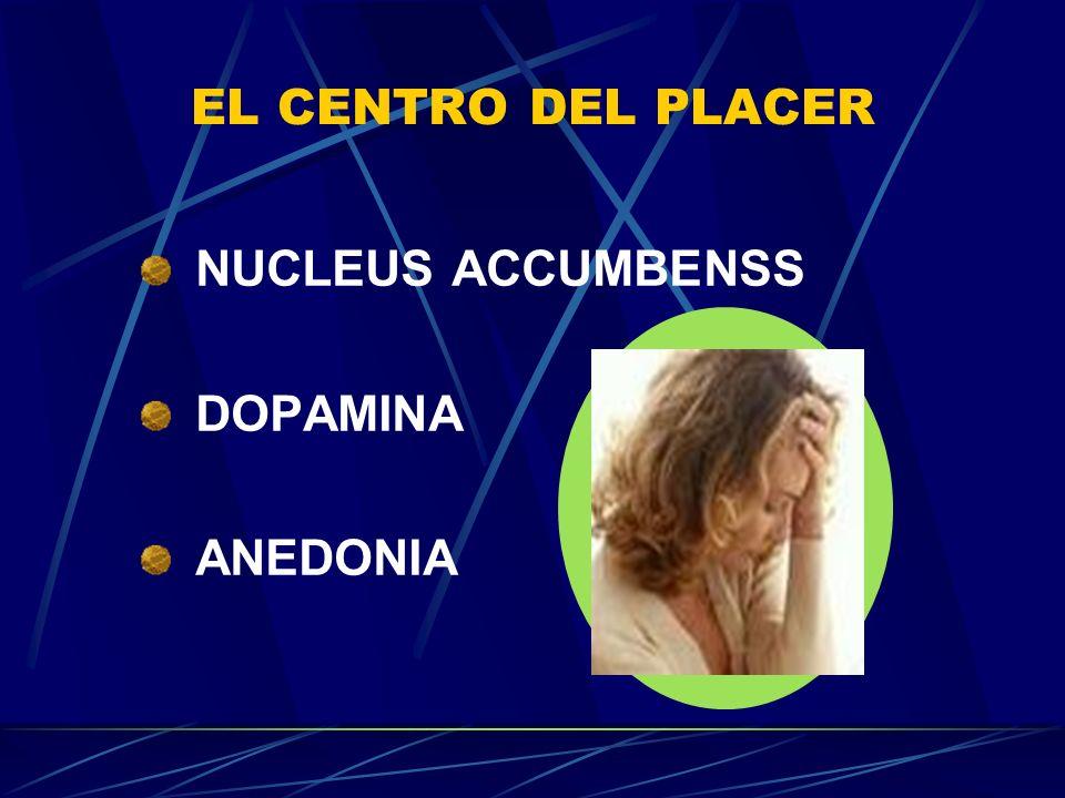 EL CENTRO DEL PLACER NUCLEUS ACCUMBENSS DOPAMINA ANEDONIA