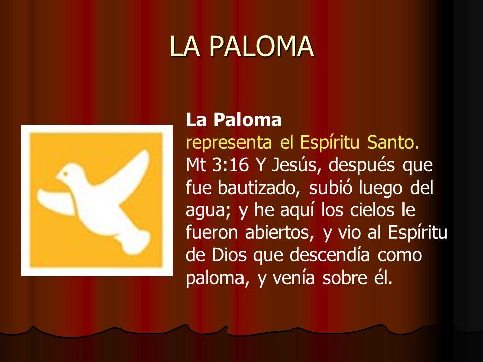 LA PALOMA La Paloma representa el Espíritu Santo. Mt 3:16 Y Jesús, después que fue bautizado, subió luego del agua; y he aquí los cielos le fueron abi