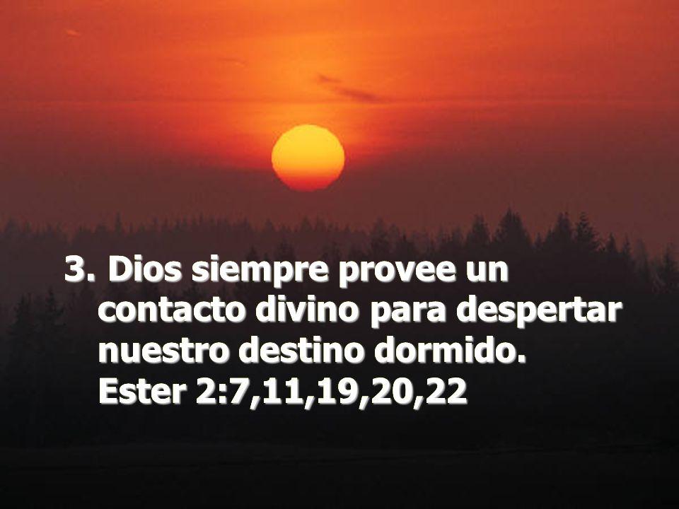 3. Dios siempre provee un contacto divino para despertar nuestro destino dormido. Ester 2:7,11,19,20,22 3. Dios siempre provee un contacto divino para