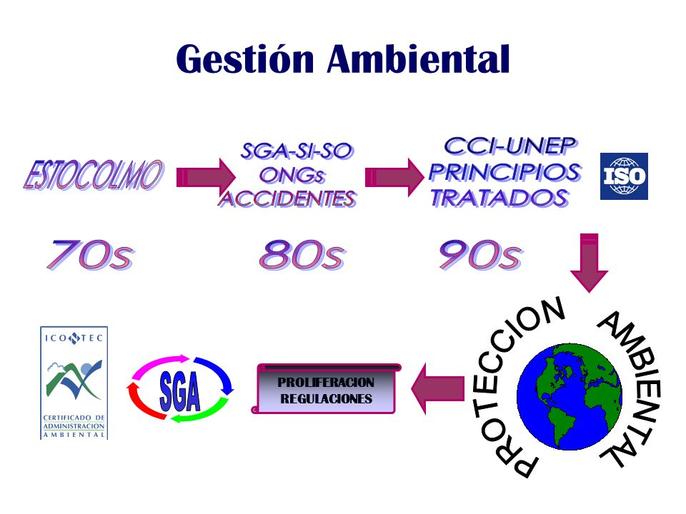 Gestión Ambiental PROLIFERACION REGULACIONES