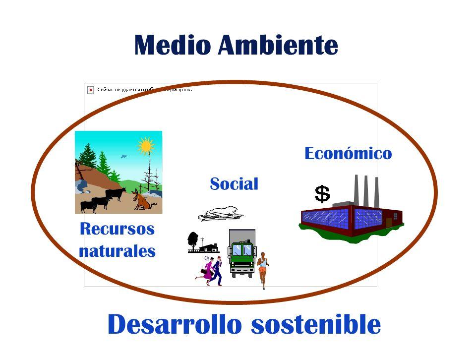 Desempeño ambiental Mejoramiento Continuo Política y compromiso Planificación Implementación Medición y evaluación Revisión