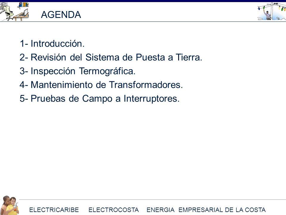 ELECTRICARIBE ELECTROCOSTA ENERGIA EMPRESARIAL DE LA COSTA AGENDA 1- Introducción. 2- Revisión del Sistema de Puesta a Tierra. 3- Inspección Termográf