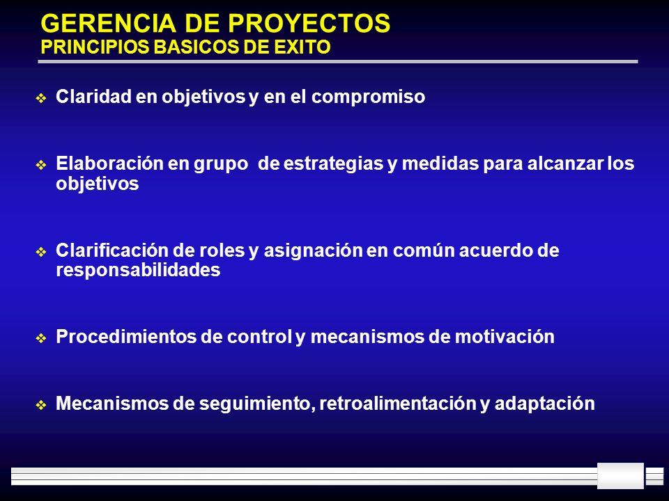 GERENCIA DE PROYECTOS PRINCIPIOS BASICOS DE EXITO Claridad en objetivos y en el compromiso Elaboración en grupo de estrategias y medidas para alcanzar