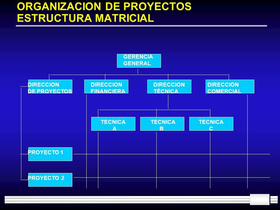 ORGANIZACION DE PROYECTOS ESTRUCTURA MATRICIAL GERENCIA GENERAL DIRECCION DE PROYECTOS DIRECCION FINANCIERA DIRECCION TÉCNICA DIRECCION COMERCIAL PROY